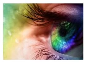 dreamers eye