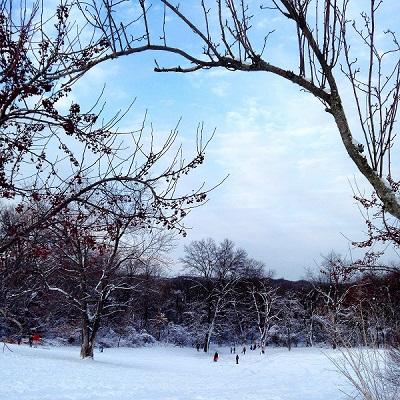 miriam snow pic