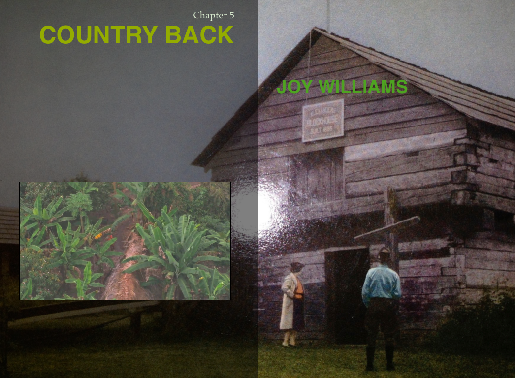 tothecountry.countryback