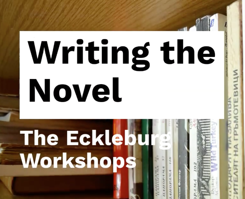 The Novel Workshop