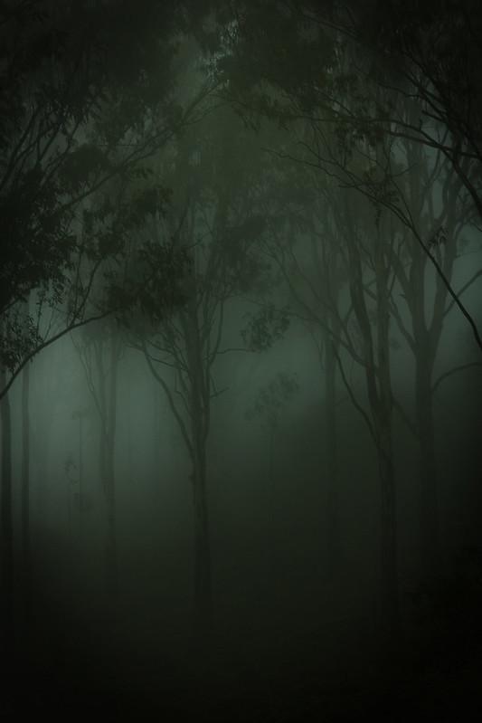 """Fogged"" by Premnath Thirumalaisamy is licensed under CC BY-NC 2.0"